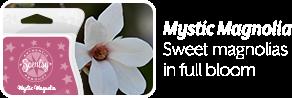 Mystic Magnolia.