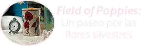Scent of the Month: Field of Poppies. A walk through the wildflowers.