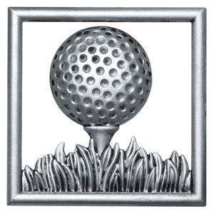 Scentsy Golfball Birdie Gallery Frame plate