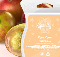 Scentsy Tropical