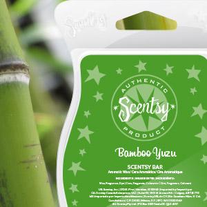 Bamboo Yuzu Scentsy Bar