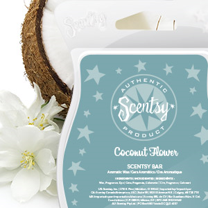 Coconut Flower Scentsy Bar