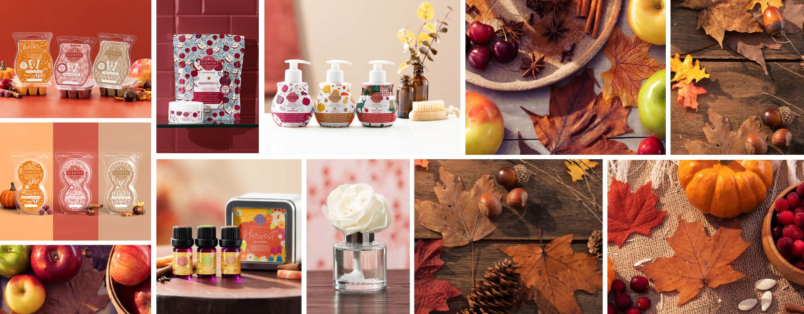 Eine Bildcollage mit den Herbstölen im 3er-Pack, dem Scentsy Bar 3er-Pack der Herbstkollektion, der Handseife im 3er-Pack zum Herbst, einer Duftblume Buttercup Belle, drei Scentsy Pod Doppelpacks und einem Badesalz und Zuckerpeeling mit dem Duft Appleberry, alle umgeben von herbstlicher Dekoration.