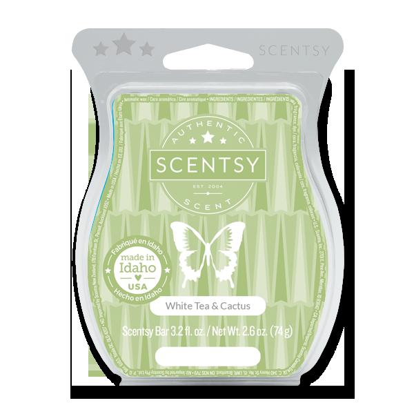 White Tea & Cactus Scentsy Bar