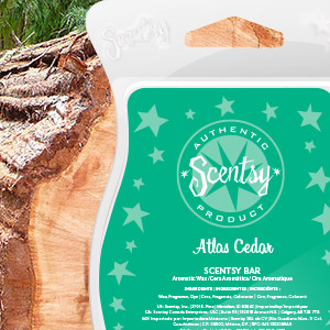 Atlas Cedar Scentsy Bar
